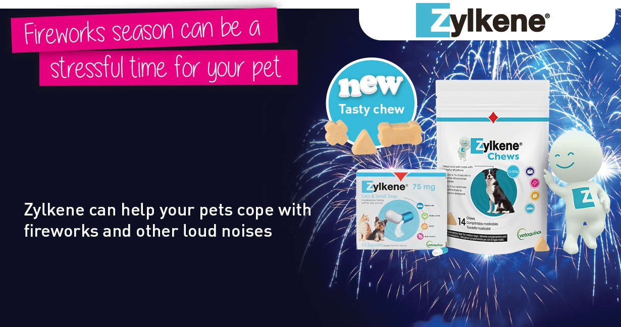 Zylkene can help your pet cope with fireworks and other loud noises