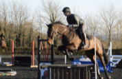 William Fox-Pitt Jumping Clinic with Equistro Feed Supplements